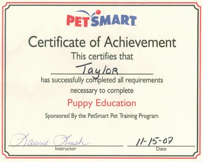 20071115-PuppyGrad